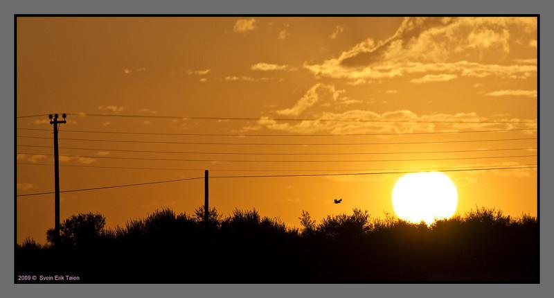Sunrise, Stalos - IV