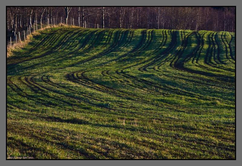 Farmer traces<br /> Field at Bodin gard, Bodø