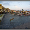 Old harbour of Chania - before everybody wake up