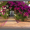 Flower gate<br /> Stalos