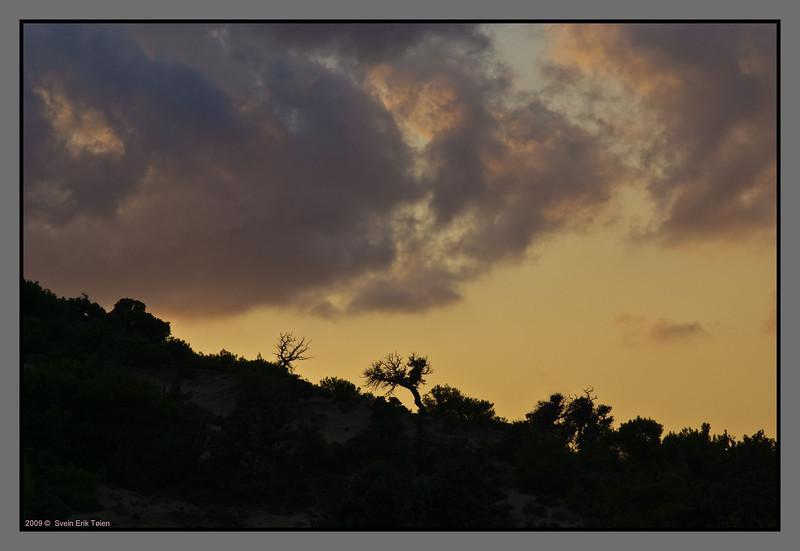 Evening silhouette - by Fetife