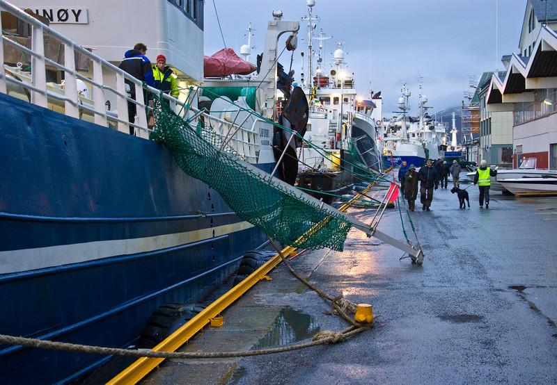high tide - steep ladders II
