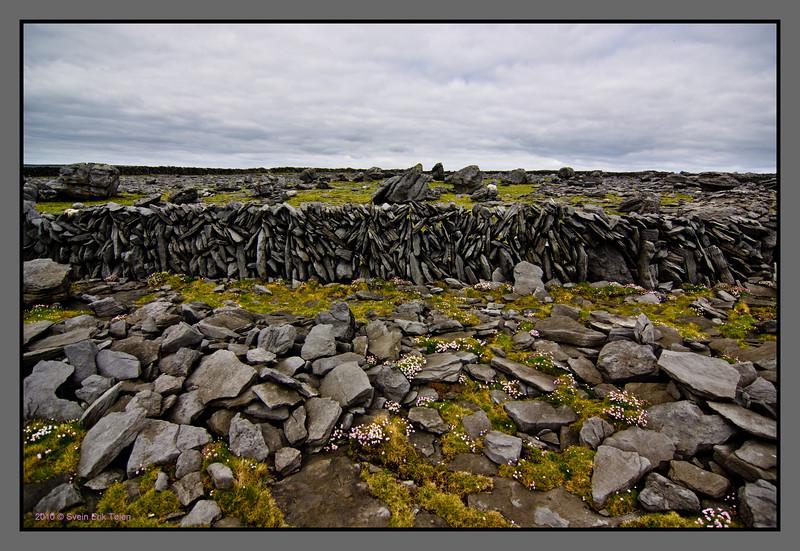 Stony landscape I<br /> Killeany