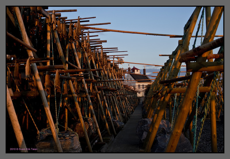 Walkway to the lighthouse<br /> Racks for drying fish, Værøy