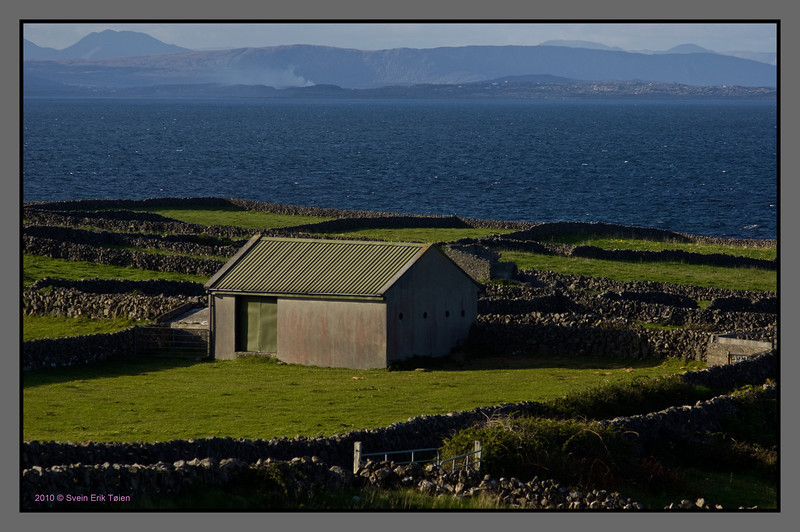Green and blue<br /> Cattle fields of Inishmore