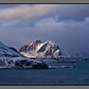 Mosken<br /> Værøy, Lofoten