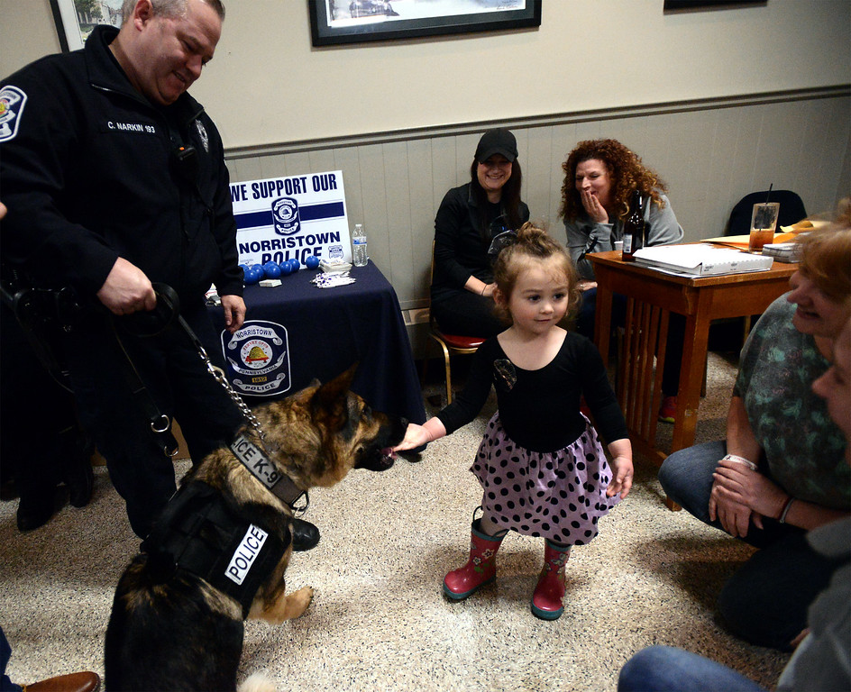 . Cecelia Brusch, 3, gives Nero a treat as K-9 officer Christopher Narkin holds him May 13, 2017.  (Bob Raines/Digital First Media)