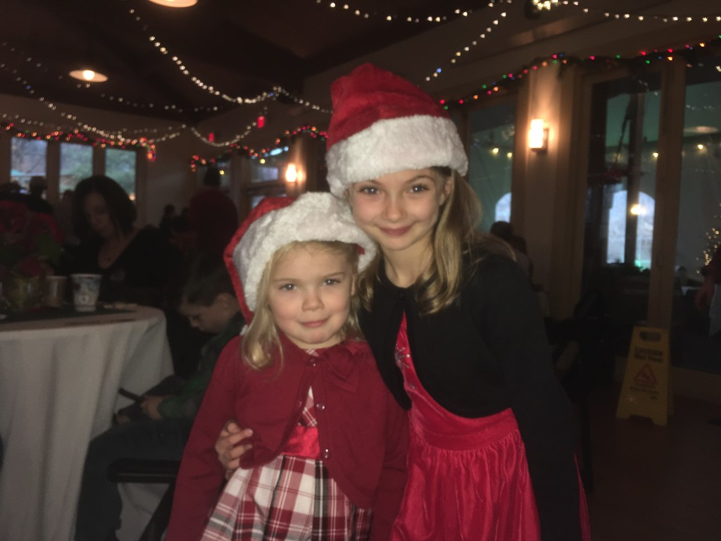 . Kara Miller, left, and her sister, Giannna, dress for the occasion at Brunch with Santa at Elmwood Park Zoo, Norristown, Saturday, Dec. 23, 2017. (Joe Barron � Digital First Media)