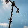 PHL-L-EaglesParadePhotos-0208o