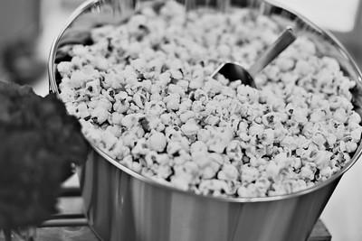 Inspired-Popcorn-114_bwart