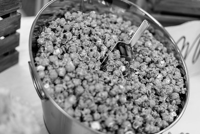Inspired-Popcorn-116_bw2
