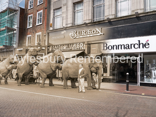 Circus Elephants in Market Square, 1959 and 2016