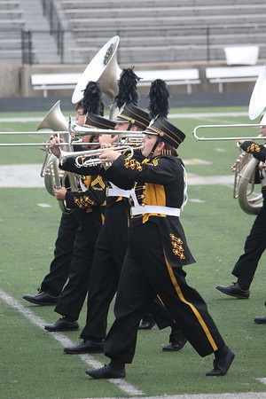 Timpson HS Marching Band at Area, Regionals