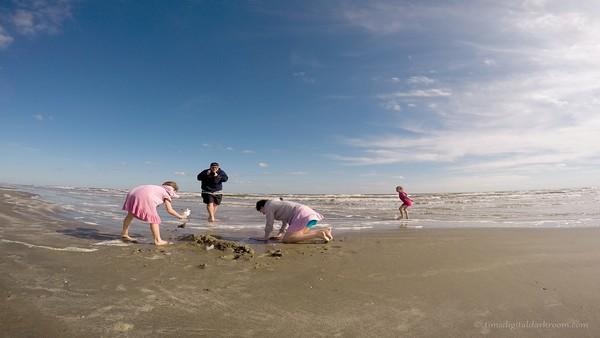 galveston beach tlv