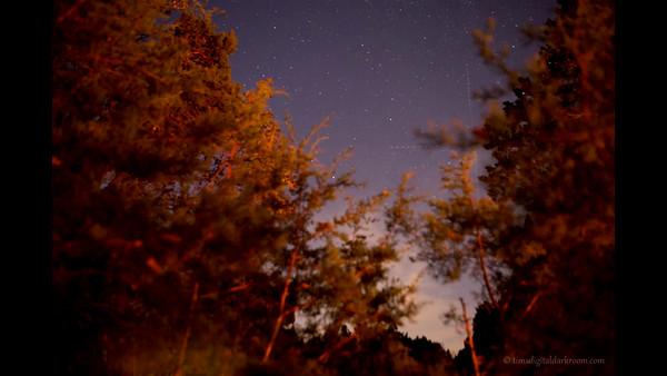 Sat  Night Stars TLV Rail