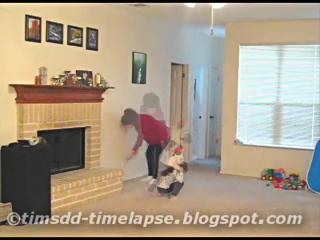 Christmas Tree Fevah! Timelapse Video