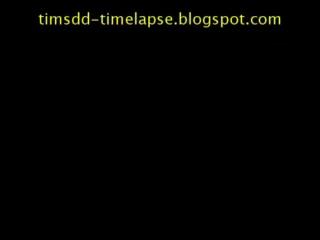 Baggage Claim #4 Timelapse Video