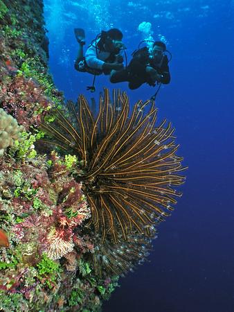 Tinian 2010
