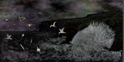 Riders on the Storm  (northern gannets)