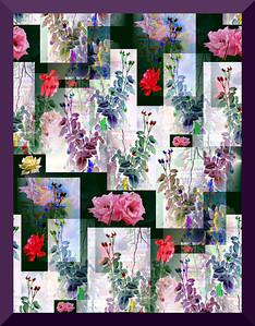 One-star Rose Garden