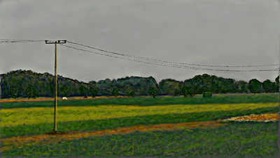 Hungarian fields