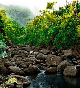 "Hanakapi'ai Valley, Kauai  paper 9""x8"" $100 paper 21x18 $410 paper 33x30 $950  canvas 33x30 $1050 canvas 50x46 $2500"