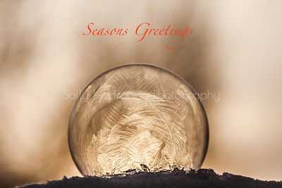 Frozen Bubbles~Christmas Card