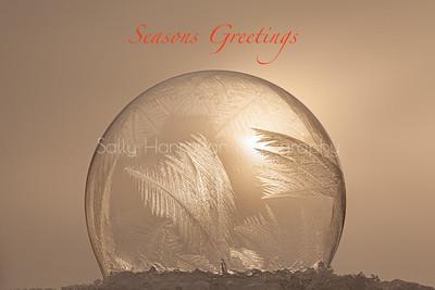 Frozen Bubbles~Christmas card
