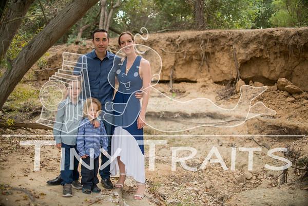 tinytraits_101215_Stein Family-1