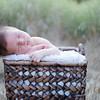 Baby Grant-20
