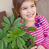 tinytraits_Sunflower_Olivia B Sacchetto-13