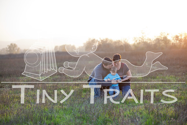 tinytraits_2012128_Heinz Family-1