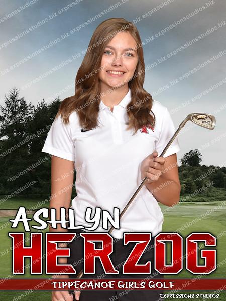 AHTCG copy