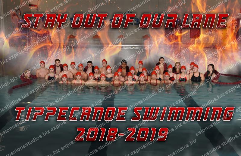 TC Swimming Poster 2018 copy