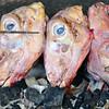 Market - Spit-Roasted Lamb Heads