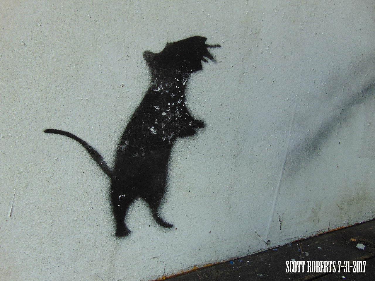 Someone must carry around a cut-out templet for those moments when they feel the need to make a rat graphitti.