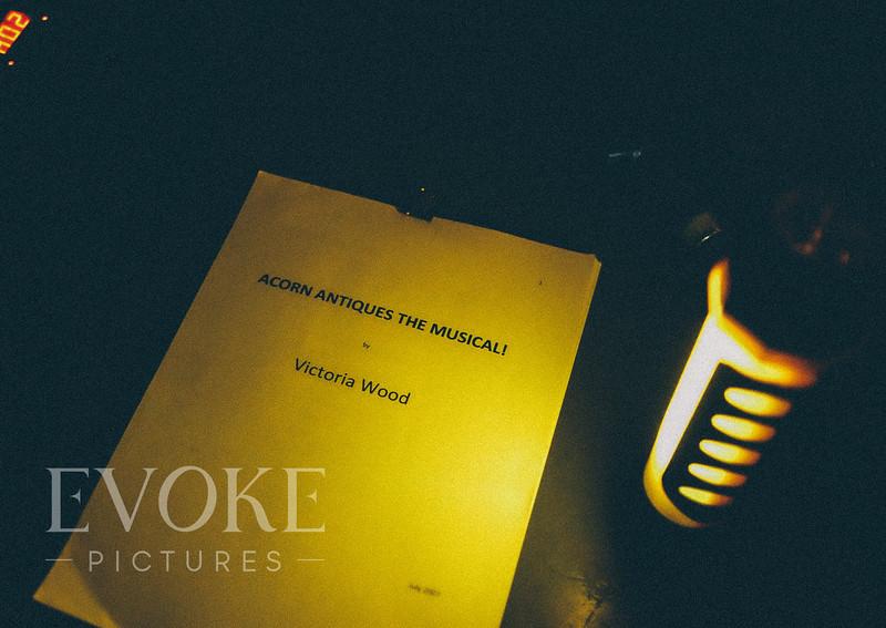 Bristol Theatre Photography_Evoke Pictures_Acorn Antiques-001