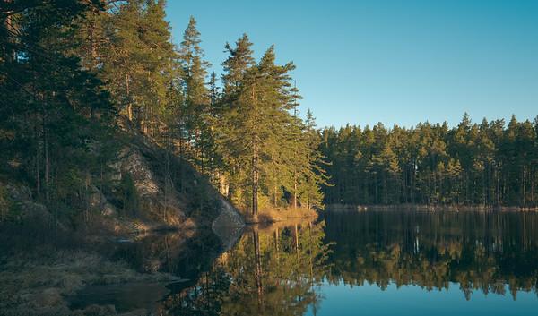 Good Morning, Lake