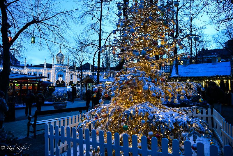 Juletræet med sin glans...og Nimb