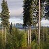 AK2015080006 - Touring Alaska, Fairbanks, AK, 8/2015