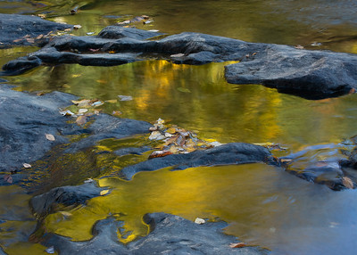 Reflections in Glade Creek #2