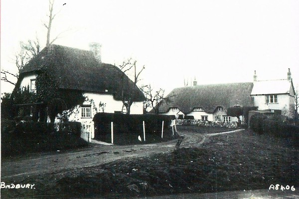 Cottages at the top of Berrycot Lane 1950`s