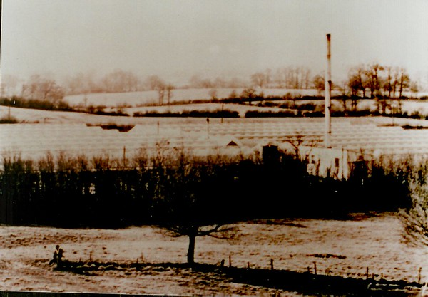 Plough Hill Nurseries..demolished 1968 to 69 to make way for the M4 motorway