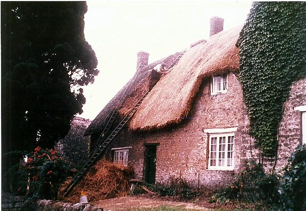Badbury Farmhouse with Thatcher Jack Grey 1950s