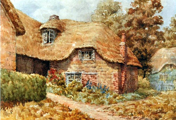 The Wirdnams cottage..number 26 I think in painting form