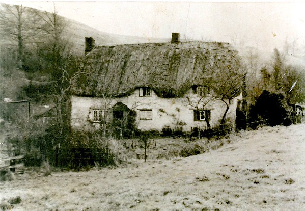 Mill bottom cottages 1955,they burned down soon afterwards