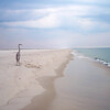 Pensacola Florida - crane on the beach