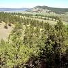 South Dakota Black Forest Hills