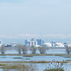 View of Sacramento across flooded Yolo Bypass