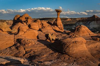 Toadstools in southern Utah